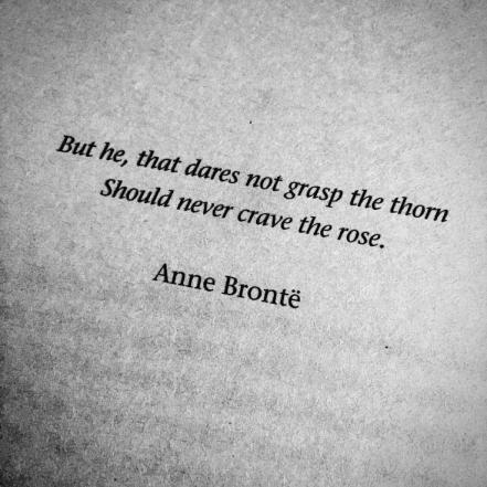 never crave the rose